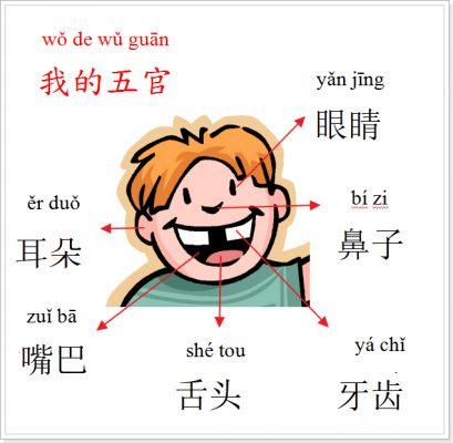 Các bộ phận trên khuôn mặt bằng tiếng Trung